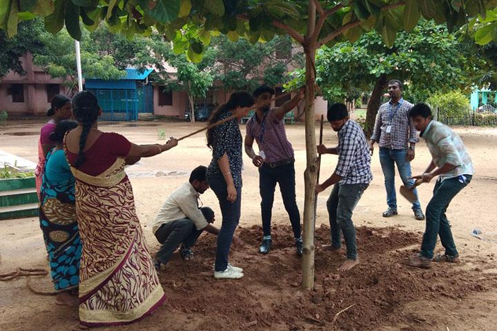 Re planting a fallen tree